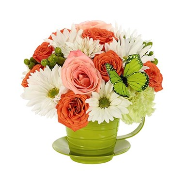 """For all you do"" tea cup flower bouquet (BF391-11KM)"